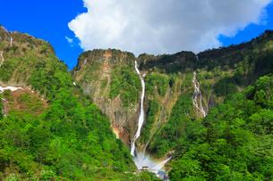 称名峡谷 ハンノキ滝と虹の写真素材 [FYI02991410]