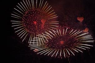 なにわ淀川花火大会の写真素材 [FYI02991475]