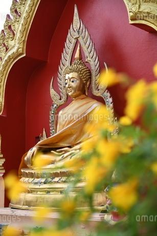 タイの寺院の仏像の写真素材 [FYI02991631]