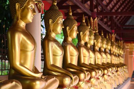 寺院の仏像の写真素材 [FYI02991640]