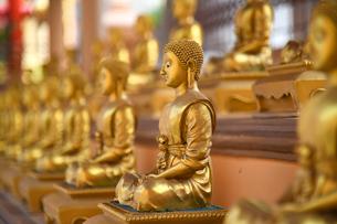 寺院の仏像の写真素材 [FYI02991649]