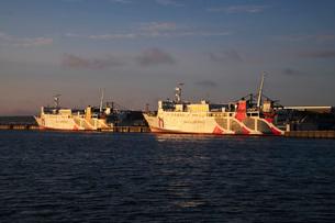 稚内港とハートランドフェリーの朝の写真素材 [FYI02991693]