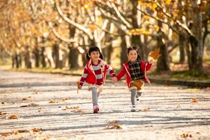 秋の公園で遊ぶ子供の写真素材 [FYI02991846]
