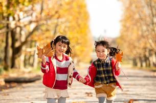 秋の公園で遊ぶ子供の写真素材 [FYI02991849]