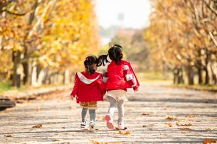 秋の公園で遊ぶ子供の写真素材 [FYI02991850]