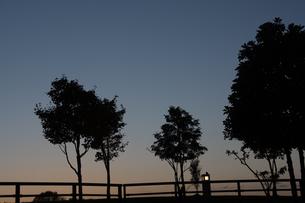 夕暮れの公園の写真素材 [FYI02991864]