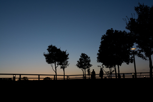 夕暮れの公園の写真素材 [FYI02991865]