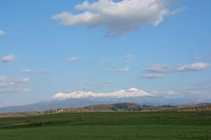 緑の草原と冠雪した山並み 大雪山の写真素材 [FYI02991880]