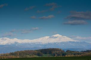 秋の大地と冠雪した山並み 大雪山の写真素材 [FYI02991881]