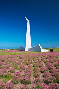 祈りの塔とアルメリアの写真素材 [FYI02991901]