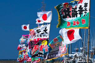 宗谷漁港の漁船と大漁旗の写真素材 [FYI02991902]