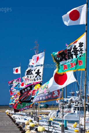 宗谷漁港の漁船と大漁旗の写真素材 [FYI02991904]