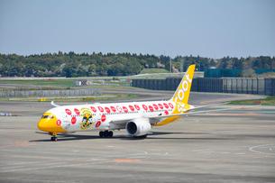 成田国際空港のLCCスクートの写真素材 [FYI02991968]