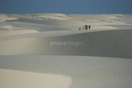 レンソイス・マラニャンセス国立公園の写真素材 [FYI02992010]