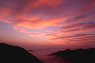 雲海有名地、野迫川の雲海と朝焼けの写真素材 [FYI02992016]