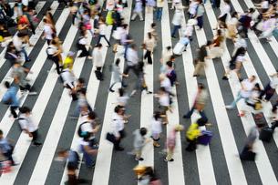 横断歩道を渡る人々の写真素材 [FYI02992171]