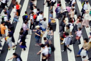 横断歩道を渡る人々の写真素材 [FYI02992173]