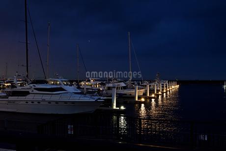 夕暮れのヨットハーバーの写真素材 [FYI02992401]