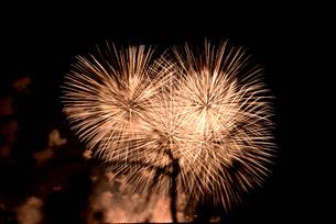 夜空の花火の写真素材 [FYI02992408]