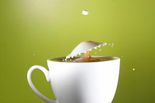 ミルクのスプラッシュの写真素材 [FYI02992636]