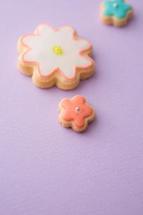 色とりどりの可愛いアイシングクッキーの写真素材 [FYI02992845]