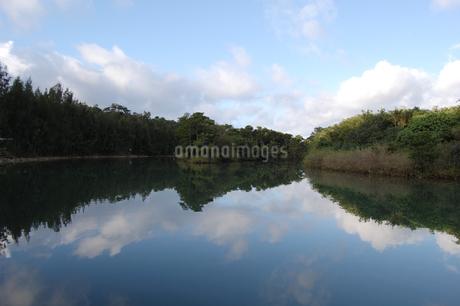 川沿いの森が水面に反射しているの写真素材 [FYI02992879]
