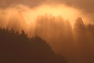 秋、雲海染まる山の朝の写真素材 [FYI02992933]