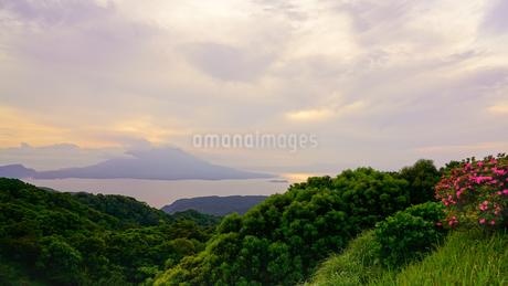 桜島夕景の写真素材 [FYI02993053]