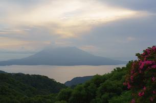 桜島夕景の写真素材 [FYI02993054]