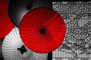 和の美、和傘の写真素材 [FYI02993057]