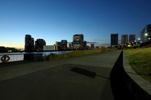 運河沿いの遊歩道と夜明けの豊洲のビル群の写真素材 [FYI02993223]