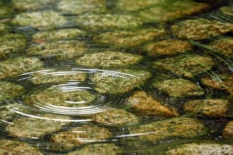 清流に落ちた水滴の波紋の写真素材 [FYI02993296]