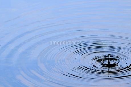 池に落ちた水滴の波紋の写真素材 [FYI02993315]