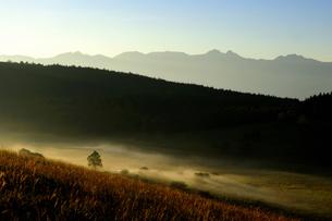 霧ヶ峰高原朝霧流れる踊り場湿原と八ヶ岳の山並みの写真素材 [FYI02993377]