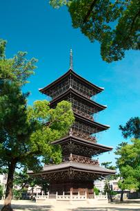 善通寺の五重塔の写真素材 [FYI02993648]