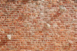 レンガの壁の写真素材 [FYI02993704]