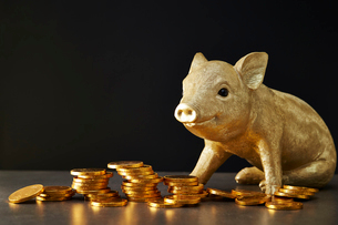 硬貨と豚の置物の写真素材 [FYI02993779]