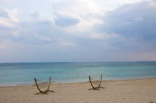 浜辺のハンモックの写真素材 [FYI02993794]