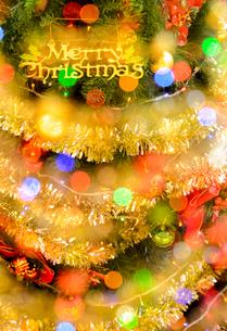 クリスマスツリーの写真素材 [FYI02994361]