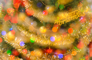 クリスマスツリーの写真素材 [FYI02994362]
