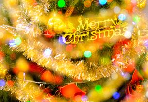 クリスマスツリーの写真素材 [FYI02994365]