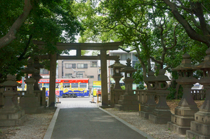 住吉大社の鳥居と阪堺電車の写真素材 [FYI02994466]