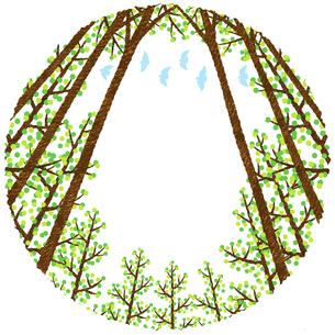 林のフレームのイラスト素材 [FYI02994726]