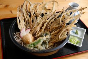 ごぼうの天ぷらそばの写真素材 [FYI02994757]