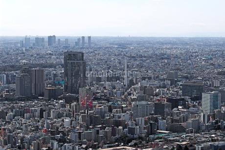 東京の住宅街の風景の写真素材 [FYI02994859]