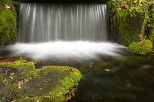 山奥の小さな滝の写真素材 [FYI02994918]