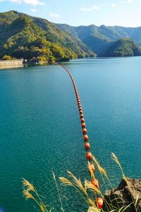 秋の奥多摩湖の風景の写真素材 [FYI02994925]