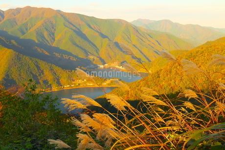 山の上から撮影した秋の奥多摩湖の写真素材 [FYI02994939]