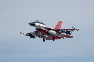 F-2支援戦闘機 フェイクファルコンの写真素材 [FYI02995155]