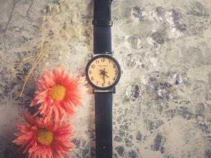 腕時計と花の写真素材 [FYI02995361]